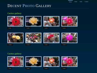 Gallery Decent