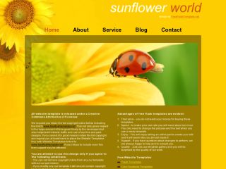 Sunflower world