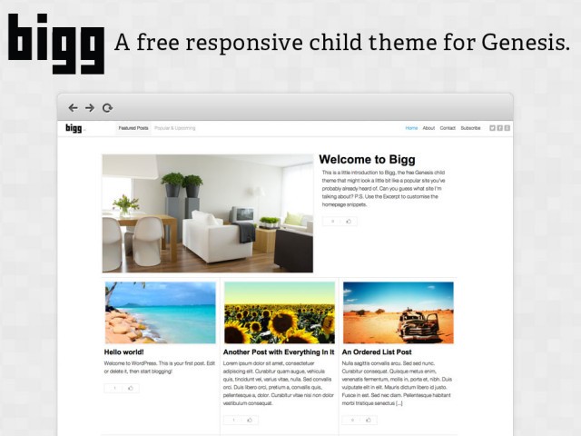Bigg: A free Genesis child theme